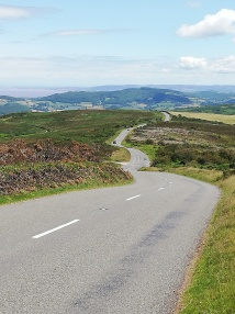 The road, the scenery, the bike and I...